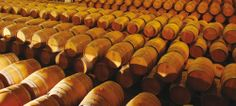 Barriques des vignerons de Buzet