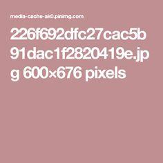 226f692dfc27cac5b91dac1f2820419e.jpg 600×676 pixels