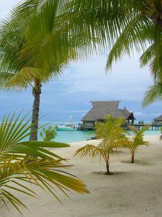 Bora Bora Nui Tahiti by Jeremiah Christopher Bora Bora, Tahiti, Romantic Vacations, Dream Vacations, Vacation Destinations, Vacation Spots, Italy Vacation, Places To Travel, Places To See