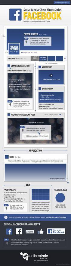 Evolución de las páginas de empresa en Facebook 2013