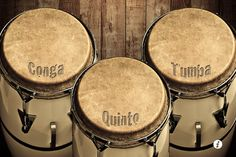 America knows these Afro-Cuban hand drums as conga... the 3 basic sizes are shown here... but also a requinto (smaller) and super tumba are used...