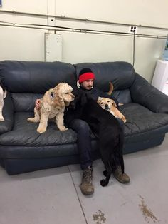 dog's are always a man's best friend at Dingo's doggy daycare and dog sitting!