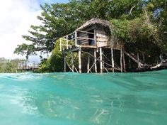 Samoa vacation Home Savaii Hotels, Overwater Bungalows, Travel Information, Capital City, Holiday Destinations, Hotel Reviews, Oh The Places You'll Go, Trip Advisor, Cabin