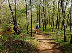 There are beautiful state parks minutes from our home. We love hiking through the woods, observing nature, swimming and exploring.
