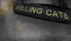 Rolling cats team black belt