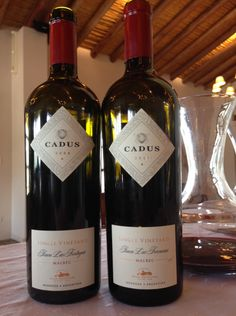 Cadus 2011 was milk chocolate and blackberry jam with some purple floral notes, amazingly delicious finish. The 2008 was like the mom to the younger daughter.