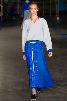 Roksanda Ilincic Fall 2014 Ready-to-Wear Collection Slideshow on Style.com