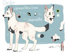 Cecilio 2013 reference by FourDirtyPaws on DeviantArt