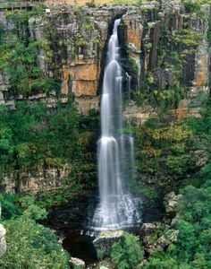 Graskop Gorge in Mpumalanga --South Africa Travel Around The World, Around The Worlds, South Afrika, Rio, Les Cascades, Out Of Africa, Africa Travel, Countries Of The World, Holiday Destinations