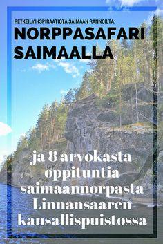 Norppasafari Saimaalla: Linnansaaren kansallispuisto ja 8 oppituntia saimaannorpasta  | Live now – dream later -matkablogi Finland, Europe