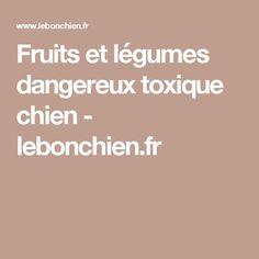 Fruits et légumes dangereux toxique chien - lebonchien.fr