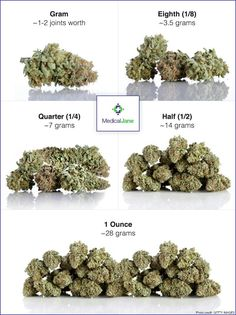 Weed Online Supplier is a fast and discreet place to Buy Marijuana/ Buy weed /Buy cannabis at affordable prices within USA and out of USA.Get the best with us as your satisfaction is our website at www.weedonlinesupplier dot com. call/text/whatsapp at 978