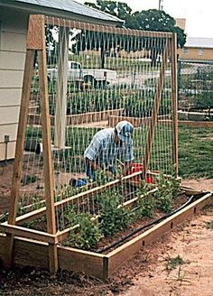 Raised Bed Garden La