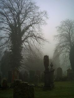 Greenock Cemetery | Scotland Spooky House, Spooky Places, Old Cemeteries, Secret Places, Beautiful Places, Places To Visit, Scenery, Vacation, Nature