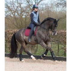 LeMieux Mesh Air Dressage Square - Burgundy - Saddlecloths & Pads - Saddlery - Tack | Equestrian Performance