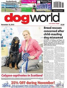 Breed rescues concerned after child-mauling dog misnamed