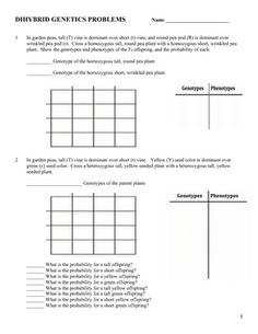 Dihybrid (Two Factor) Genetics Practice Problems. This is a worksheet of 11 dihybrid