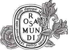 Rosa Mundi logo by diptyque. @diptyquedavid