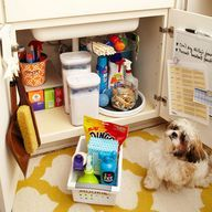 In this cabinet, frequently used laundry supplies are up front, sending overstock and less-used items to the back: ...