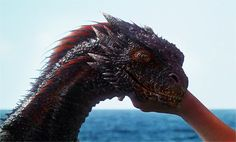 tv show game of thrones dragon got dragons mother of dragons drogon black dragon Drogon Game Of Thrones, Game Of Thrones Dragons, Got Dragons, Game Of Thrones Fans, Daenerys Targaryen, Khaleesi, Magical Creatures, Fantasy Creatures, Game Of Thrones Premiere