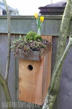 How to make a Green Roof Birdhouse DIY Side View (Medium)