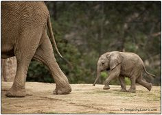 (via 500px / One Small Step… by Laurie Rubin)