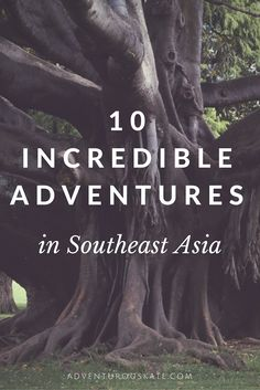 You know how much I live for adventures! My six months in Asia were filled with them, and I don't regret any of them. I'll be telling these stories forever. But some of the adventures were a lot better than others. Here are my top 10 adventures in Southeast Asia.