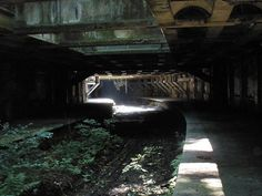 Glasgow's old Botanic Gardens Station and Kelvinbridge Station subway tunnels. Abandoned around 1939, the tunnels hide in plain sight under the botanic gardens here.