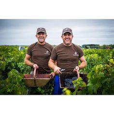 Happy twin-harvesters at Chateau Cos d'Estournel ! These guys where both so proud and happy to be there ! #cosdestournel #chateaucosdestournel #wine #vin #vineyard #vigne #vignoble #bordeaux #saintestephe #happy #harvest #vendanges #bonheur #grapes #raisin