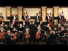 Células tumorais expostas à Quinta Sinfonia de Beethoven diminuíram ou morreram   Hypeness – Inovação e criatividade para todos.