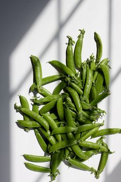 Blistered Snap Peas with Miso Butter | Pollinate Journal