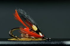 Bits and pieces on a size 8.  By Paul Slaney