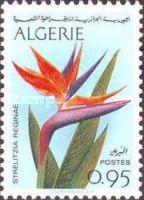 [Algerian Flowers, type JJ]