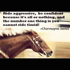 Barrel racing and Charmayne James.she's been my idol since I was a kid! Cowgirl Quote, Cowgirl And Horse, Horse Girl, Horse Love, Dark Horse, Rodeo Quotes, Equine Quotes, Equestrian Quotes, Hunting Quotes