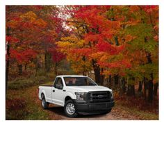 """""""Autumn Drive"""" by willfongdanielle on Polyvore featuring art"""