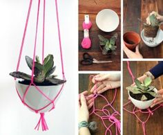 Here's another knotting tutorial for a hanging bowl.  You want to leave the plant in its grow pot though, for ease of care.