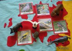 Montessori Culture & Geography