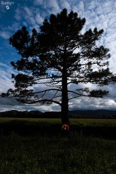Jessica + Cristian Preboda @ Muros de Nalón, Asturias. España Passion Photography, Sunlight, Couple, Celestial, Sunset, Nice, Outdoor, Christians, Sunsets