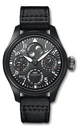 http://www.iwc.com/en/collection/pilots/IW502902/