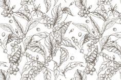 Coffee tree branch set and seamless , - Ciftligimiz Coffee Illustration, Plant Illustration, Pattern Illustration, Graphic Illustration, Illustrations, Coffee Plant, Tree Branches, Design Patterns, Food Truck