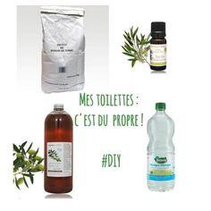 Diy Cleaners 538813542915256127 - Mes toilettes : c'est du propre ! Gel nettoyant wc Source by