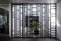 Mesquite tree serves as focal point for Mexican home by BAG Arquitectura Window Grill Design Modern, Balcony Grill Design, Grill Door Design, Window Design, Contemporary Interior Design, Best Interior Design, Interior Window Shutters, Sweet Home, Modern Windows