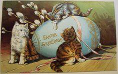 Easter kittens