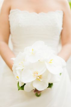 Phalaenopsis Orchid Bouquet | Iconoclash Photography