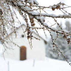 snow *chapel* ❉