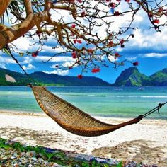 Hammock Great places for rest.I need a vacation. Beach Paradise, Tropical Paradise, Paradise Places, Paradise Travel, Paradise Island, Island Life, Dream Vacations, Vacation Spots, Great Places