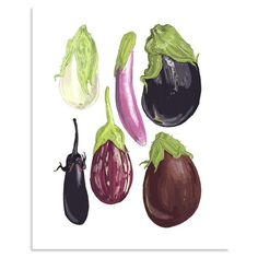 Items similar to Eggplants Illustration x Art Reproduction on Etsy Acrylic Painting For Beginners, Simple Acrylic Paintings, Vegetable Illustration, Botanical Illustration, Fruits And Vegetables Images, Vegetable Prints, Watercolor Fruit, Fruit Art, Sign Printing