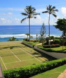 Were having a cold snap who's dreaming of grass tennis court under palms on the Caribbean? Tennis Party, Lawn Tennis, Sport Tennis, Home Basketball Court, Amazing Grass, Tennis Clubs, Barcelona, World's Most Beautiful, Beautiful Things