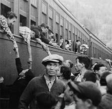 The japanese were shiped from there homes to the interment camps ware they stayed until the war was over.