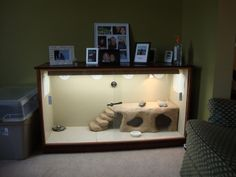 Bearded Dragon Cages | Bearded Dragon . org • View topic - Bearded dragon cage from old ... #beardeddragoncagediy
